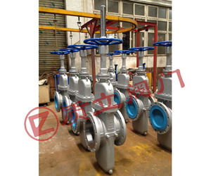 API6D Throuht  Conduit Gate Valve 150LB