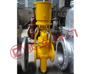Gas flat gate valve with cover